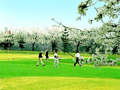 関越ハイランドゴルフクラブ画像3