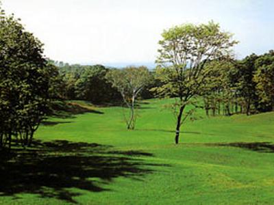 エムズゴルフクラブ1