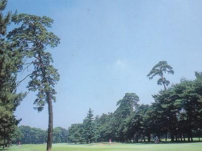 大宮ゴルフコース画像5
