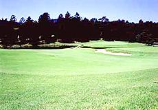 越生ゴルフクラブ画像2