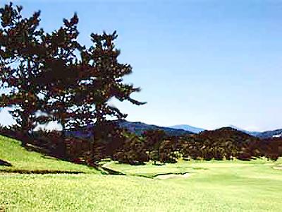 越生ゴルフクラブ画像4
