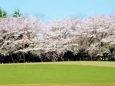 熊谷ゴルフクラブ画像5