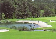 新武蔵丘ゴルフコース1