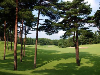 武蔵丘ゴルフコース画像2