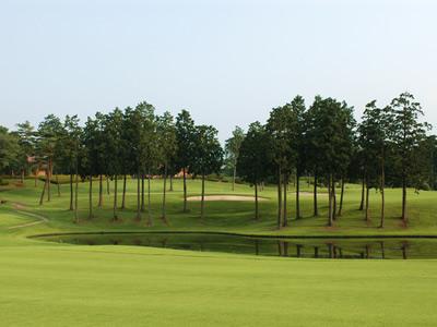 武蔵丘ゴルフコース画像4