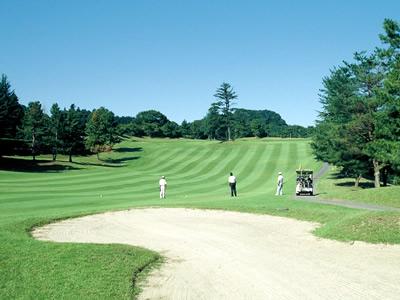 ユニオンエース ゴルフクラブ画像3