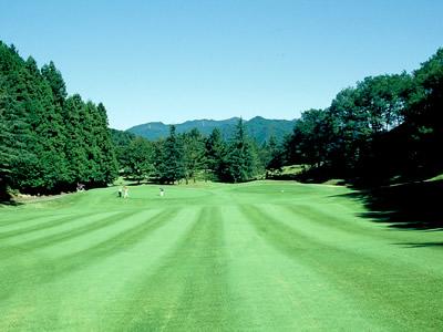 ユニオンエース ゴルフクラブ画像4