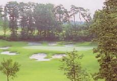 ヘリテイジゴルフコース画像2