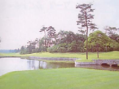 ヘリテイジゴルフコース画像5