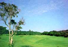 南総ヒルズカントリークラブ(旧:エンゼルカントリークラブ)画像2