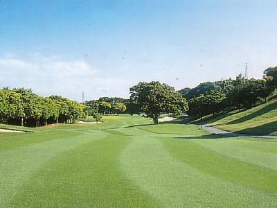 勝浦東急ゴルフコース画像4