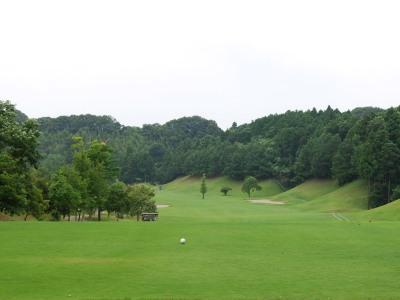 ジャパンPGAゴルフクラブ画像3