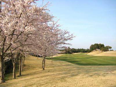 千葉桜の里ゴルフクラブ1