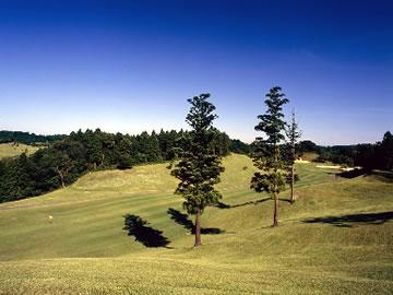 千葉桜の里ゴルフクラブ画像2