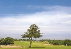 千葉セントラルゴルフクラブ画像2