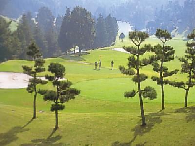 千葉セントラルゴルフクラブ画像3