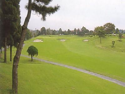 千葉セントラルゴルフクラブ画像4