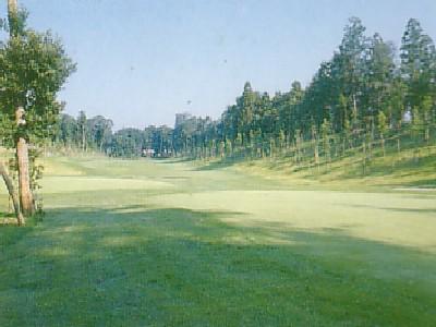 野田市パブリックゴルフ場 けやきコース画像4