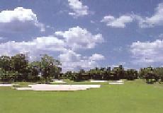 ミルフィーユゴルフクラブ画像2