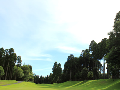 ヌーヴェルゴルフ倶楽部 金谷郷コース画像3