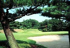 武蔵野ゴルフクラブ画像2