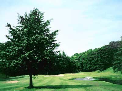 武蔵野ゴルフクラブ画像3