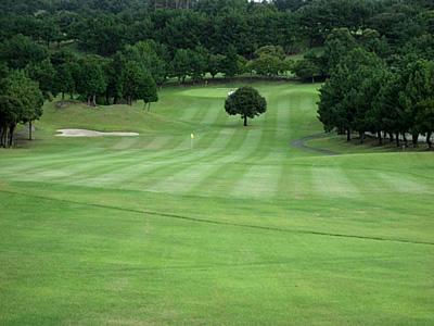 鎌倉パブリックゴルフ場画像4