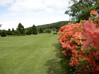 飯綱高原ゴルフコース画像3