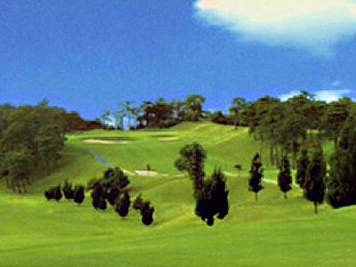 アイランドゴルフガーデン加賀画像5