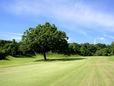 チェリーゴルフクラブ金沢東コース(旧:金沢国際GC)画像2