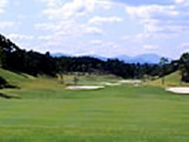 ゴルフクラブツインフィールズ画像3