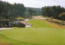 ヴィンテージゴルフ倶楽部(旧 ダイワヴィンテージGC)画像2