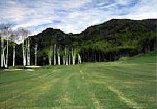 川上ゴルフ倶楽部画像2