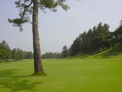 日本ラインゴルフ倶楽部画像5