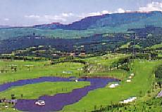 稲取ゴルフクラブ画像2