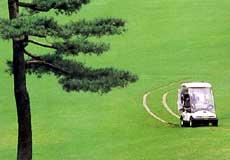 篭坂ゴルフクラブ画像2