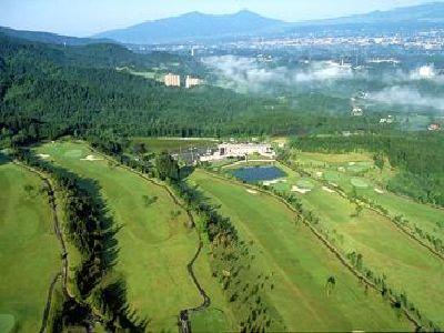 ギャツビイゴルフクラブ画像4