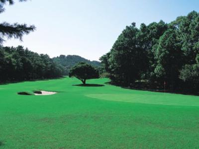 静岡カントリー島田ゴルフコース画像5