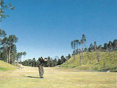 パインフラットゴルフクラブ画像4