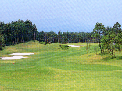 ルート25ゴルフクラブ(旧:アイ・ジィ・エーCC)画像2