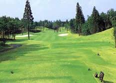 コムウッドゴルフクラブ画像2