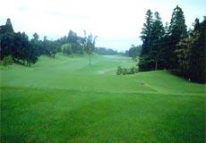 滋賀ゴルフクラブ画像2