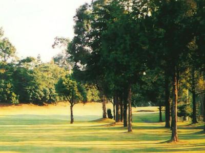 あいがわゴルフコース画像3