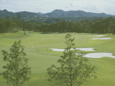東急グランドオークゴルフクラブ画像5