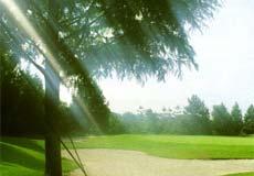 やしろ東条ゴルフクラブ(旧グリーンエースカントリークラブ)画像2
