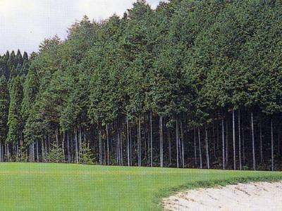 JOYXゴルフ倶楽部 上月コース画像2
