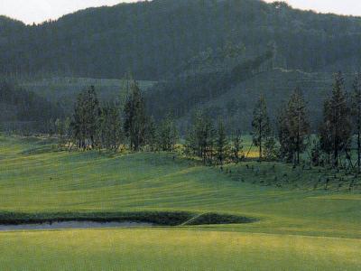 JOYXゴルフ倶楽部 上月コース画像4