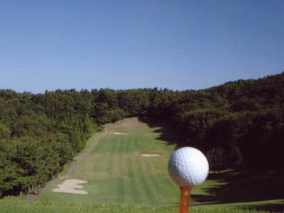宝塚クラシックゴルフ倶楽部(旧:スポーツニッポンカントリー倶楽部)画像2