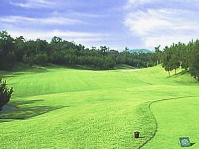 東条パインバレーゴルフクラブ(旧:タイガースゴルフクラブ)画像2