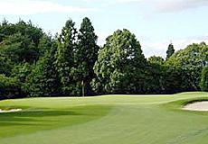 チェリーゴルフときわ台コース画像2